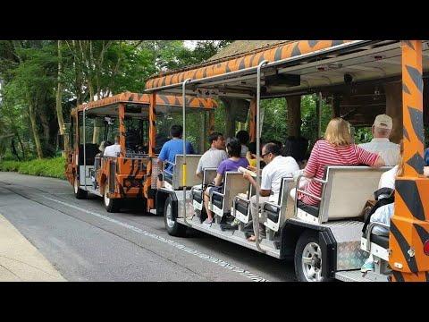 The Tram Singapore Zoo