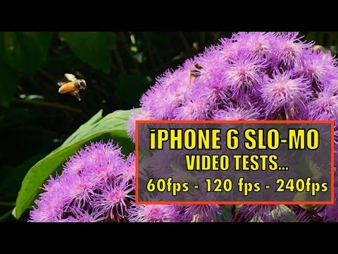 iPhone 6 Slow-Motion Video Tests…