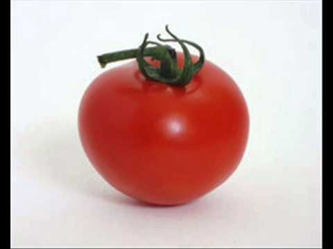 TOMATOES SAVE FROM CANCER  , INFECTION CONTROL (ICSP) , HEALTH EDUCATION , URDU / HINDI