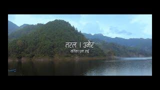 Taral- UMER (Official Video)