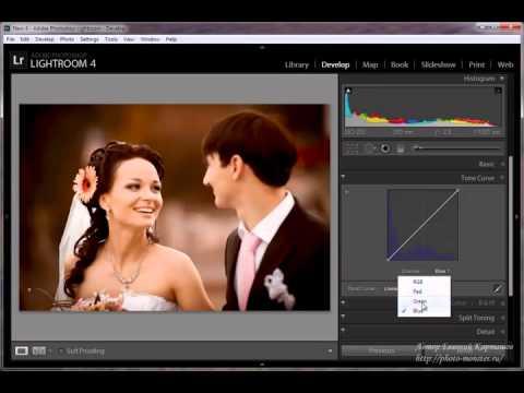 Обработка фотографий в Adobe Photoshop Lightroom   Тонирование
