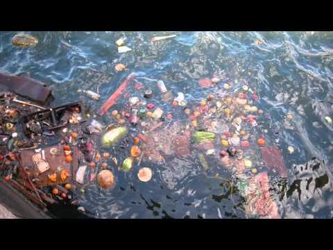 Water Pollution in Haiti