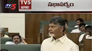 CM Chandrababu Speech in Assembly Over AP Development