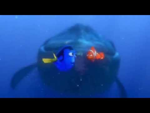 - Nemo et doris ...