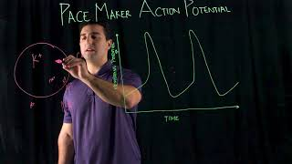 Pace Maker Action Potential