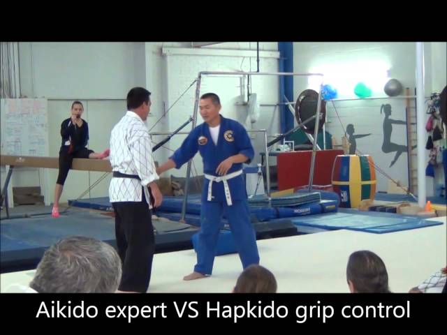 Hapkido vs Aikido
