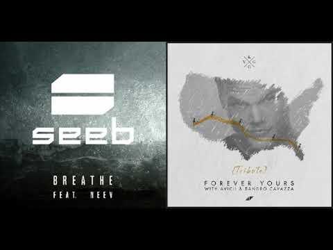 Avicii, Kygo & Seeb - Breathe Forever (SoniacManiac Mashup)