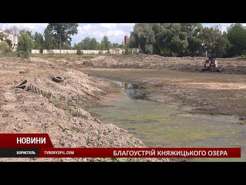 Про очистку озера Княжицьке з його подальшим благоустроєм