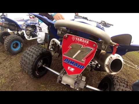 BloggerX Quad Pro Dolores 2014 Unplugged