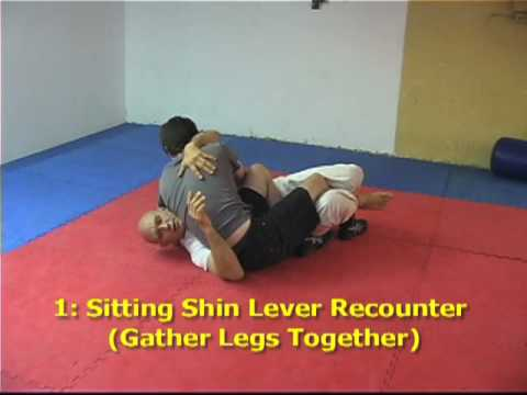 Counters to 2 Common Half Guard Passes Image 1