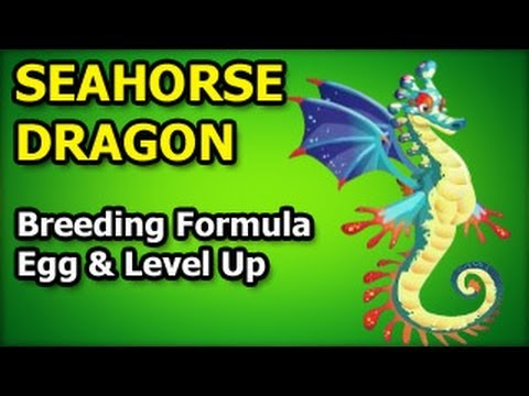 SEAHORSE DRAGON How To Breed in Dragon City Egg and Level