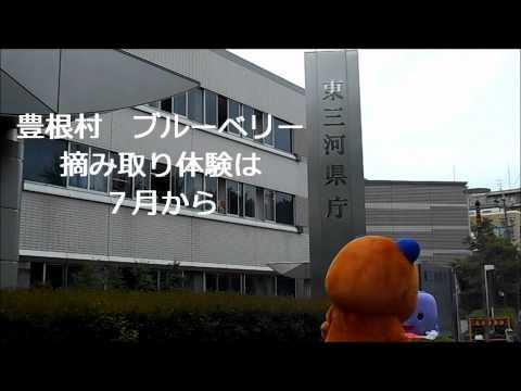 【東三河県庁×豊根村コラボ企画!】ポンタ・ベリーちゃん東三河県庁前でPR
