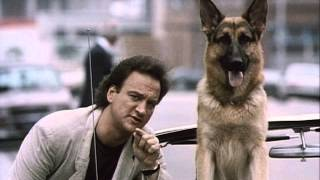 K 9 1989 K-9  1989  - Official Trailer