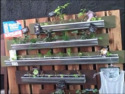 Vertical Gardening In Rain Gutters So You Can Grow Food