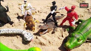 Đồ chơi cá sấu, con rắn, khủng long, siêu nhân - toy for kids