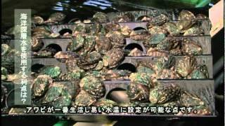 まるごと北海道 八雲町(八雲町)