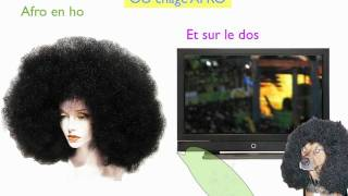 Bwa2Best Kanaval 2010 - Taye Afro