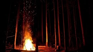 Best Fireplace HD 720p video 47 minutes of audio fire in the night forest, meditation