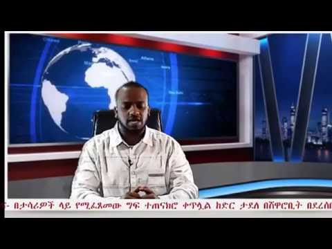 Ethiopian Daily News October 1,2016