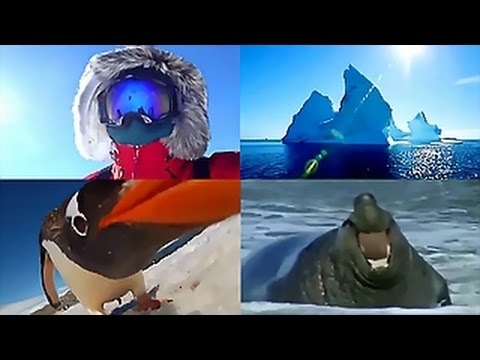 Music by CUSCO - Antarctic Continent