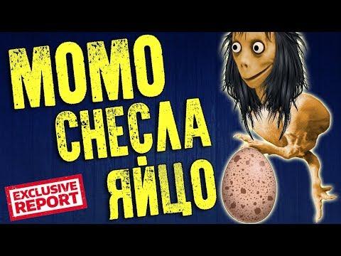 Момо Снесла Яйцо: Тайна Момо - Прикольное видео о том как Момо Снесло яйцо  Момо Приколы