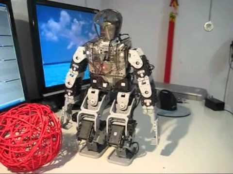 Humanoid Robot Control by LabView Part2
