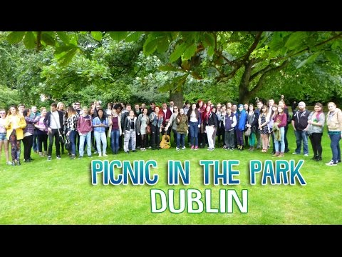 Picnic in the Park - Dublin!