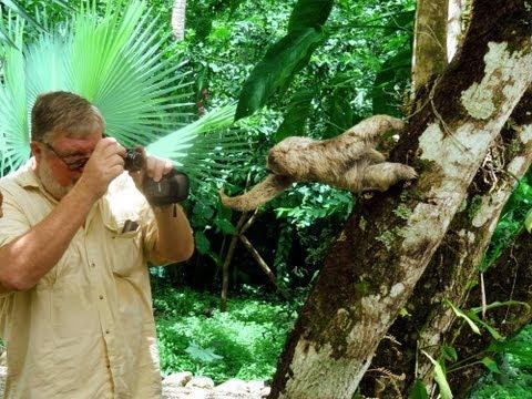 Costa Rica Travel Guide - Best of Manuel Antonio & Quepos 2013