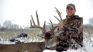 "Bowhunting deer- through hell to heaven 197"" HogWild buck"