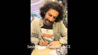 Ali Lidar-Alengirli Şiir  ( Abdullah İnce )