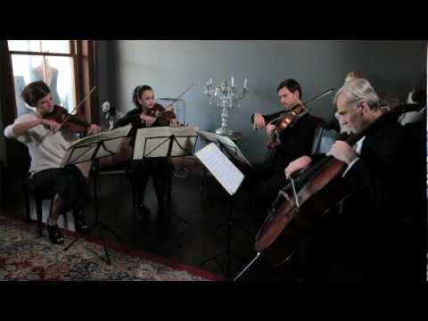 Call Me Maybe -  Stringspace String Quartet
