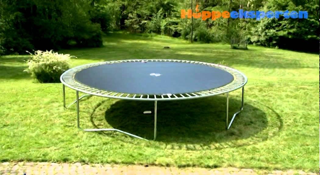 graviditet f dsel hoppeeksperten. Black Bedroom Furniture Sets. Home Design Ideas