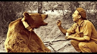 Wojtek The Soldier Bear Children's Story