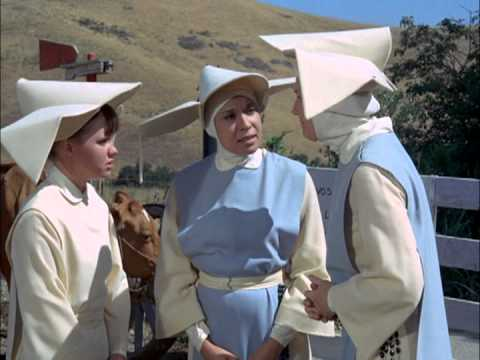 The Flying Nun The Blue Moo s02 e20