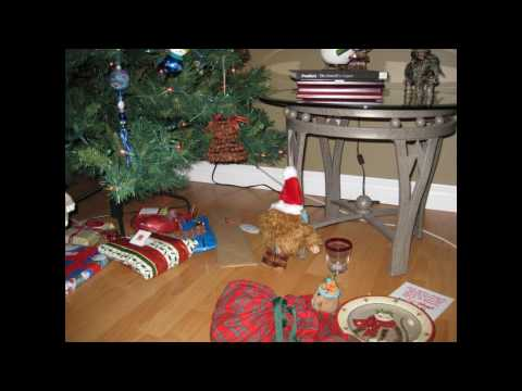 A very Quatchi Christmas: Muk Muk saves Christmas