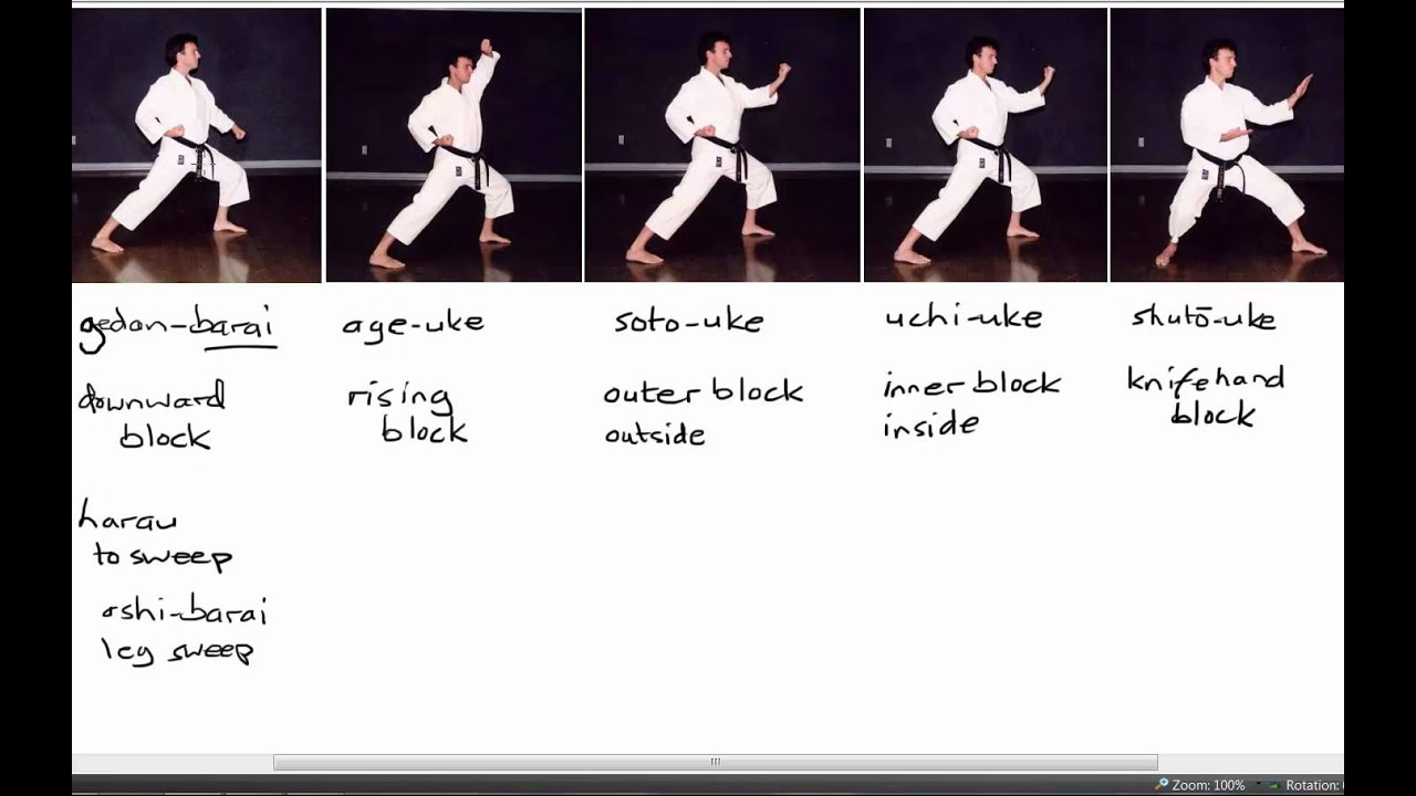 Shotokan Karate The 4 Strengths of the Worlds Most