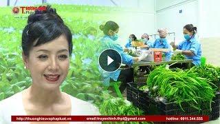 NSUT Chiều Xuân với nhiệm vụ đại sứ thương hiệu thực phẩm sạch của Công ty cổ phần đầu tư An Hoà