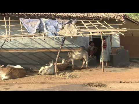 Millennium Village Project - Jharkhand, India -  MDG 1 - Eradicate extreme poverty and hunger