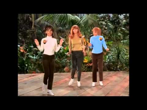 Gilligans Island - The Honeybees