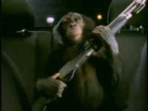 Monkey with gun commercial