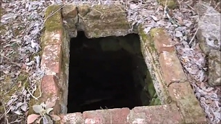 What's In The Well?