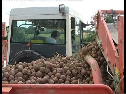 Grimme Potato Digger Video