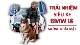 Chó Mật đi siêu xe BMW I8 quá sốc thử phản ứng người đi đường - Mật Pet Family