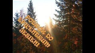 """""""Podróż do epicentrum jesieni"""" czyli samotna noc w lesie, dwudniowa wyprawa, biwak, buschcraft"""