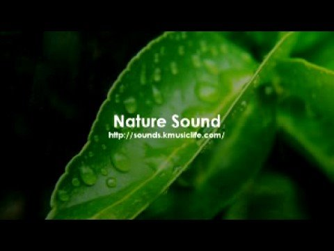 Nature Sound 1 - THE MOST RELAXING SOUNDS -