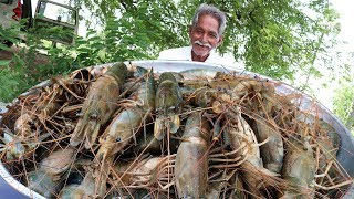 Big Shrimp Curry | Giant prawns Recipe | Yummy Prawns Recipe By Grandpa Kitchen