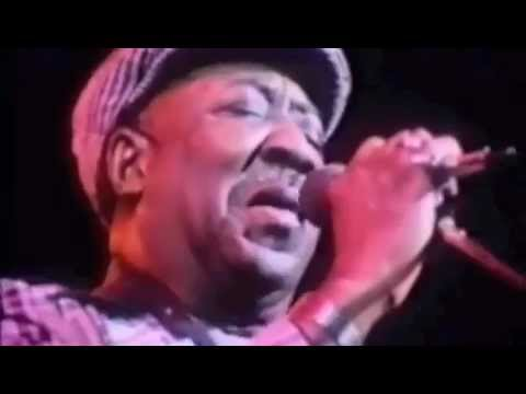 Muddy Waters Hoochie Coochie Man from Eric Claptons film Rolling hotel