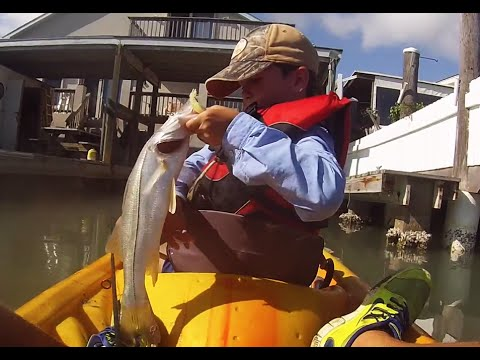 SOUTH TEXAS FISHING SHOW - Snook Fishing in Port Isabel