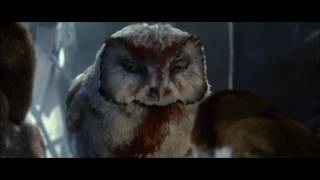end of the Guardians: The Owls of Ga'Hoole | trailer #1 US (2010)
