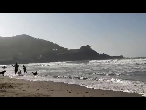 Mar Surf Surfing Linda Mar Beach on